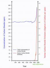 La concentración de dióxido de carbono en la atmósfera, con la contribución de crecimiento exponencial humana